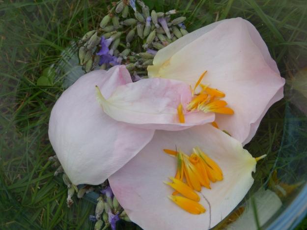 Rose petals & Marigolds