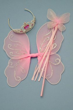 Wings, wand, tiara set